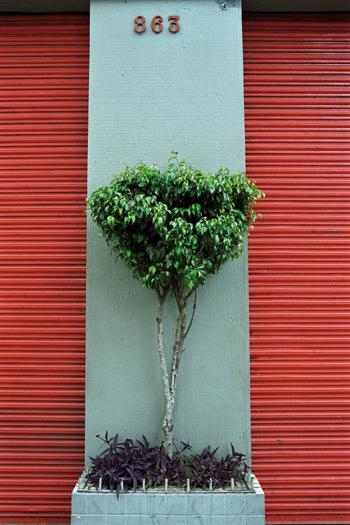 Beatriz Toledo - Hall, fotografia180x120cm, 2009.