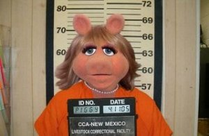 bad-miss-piggy-41323